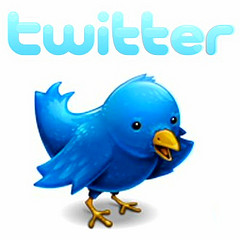 Twitter logo and icon